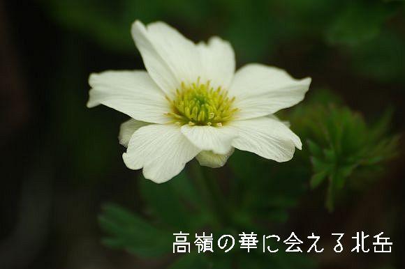 110709_999.jpg